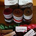Malabrigo, Holstgarn et Cascade Yarn