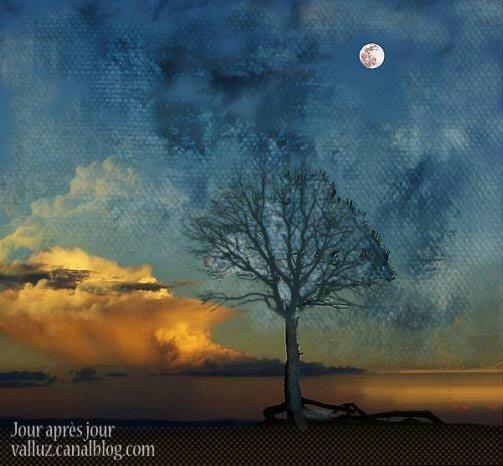 lune-arbre