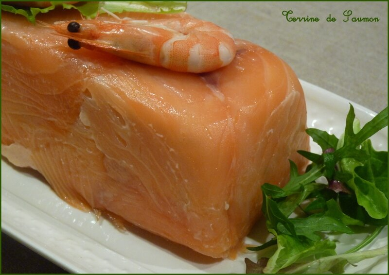 terrine de saumon4