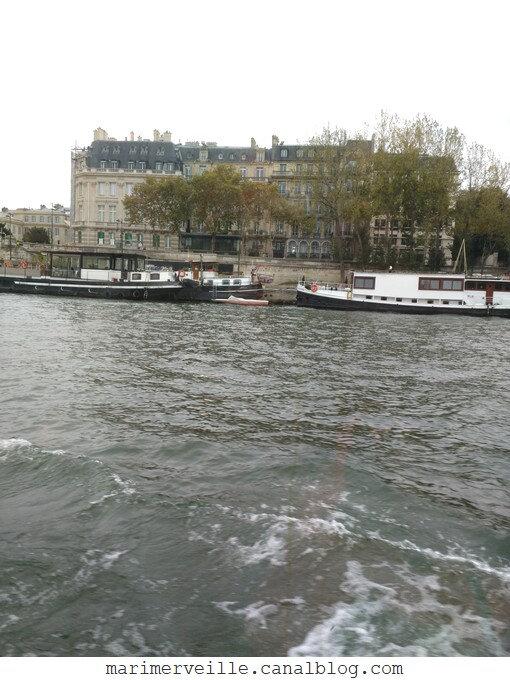 quais de seine en bateau-mouche - marimerveille
