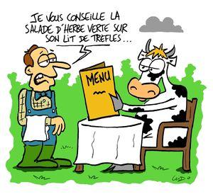 3__nourrir_les_vaches_p14_25