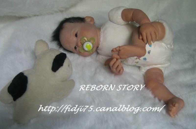 REBORN STORY