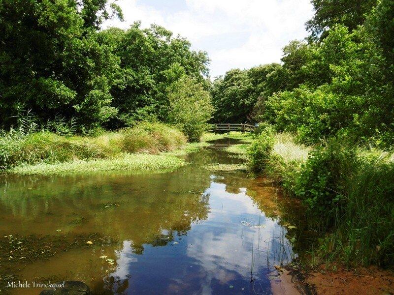 1-Balade au Lac 230717