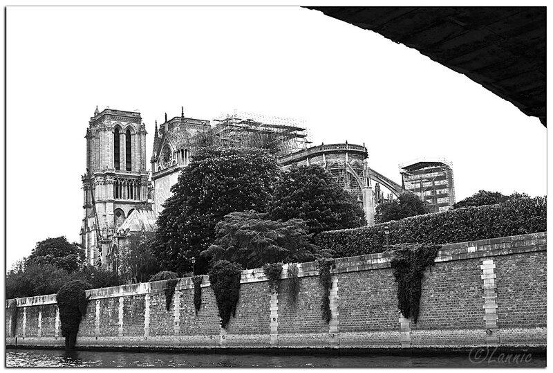Paris_Notre_Dame_incendie_2