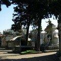 Ricoleta, le cimetière (5)