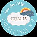 Challenge n°2 com16...toujours une semaine de retard...bouh !!!