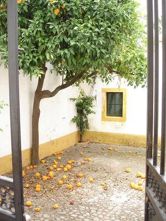 portugal_juillet_08_326