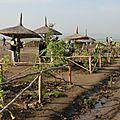 près du lac à Awassa