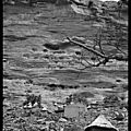 Mali : dogon country / le pays dogon