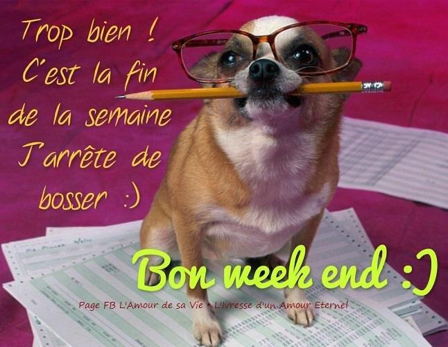 bon-week-end_036[1]
