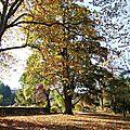 arboretum jardin botanique metz