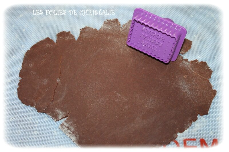 Petits beurre cacao 7