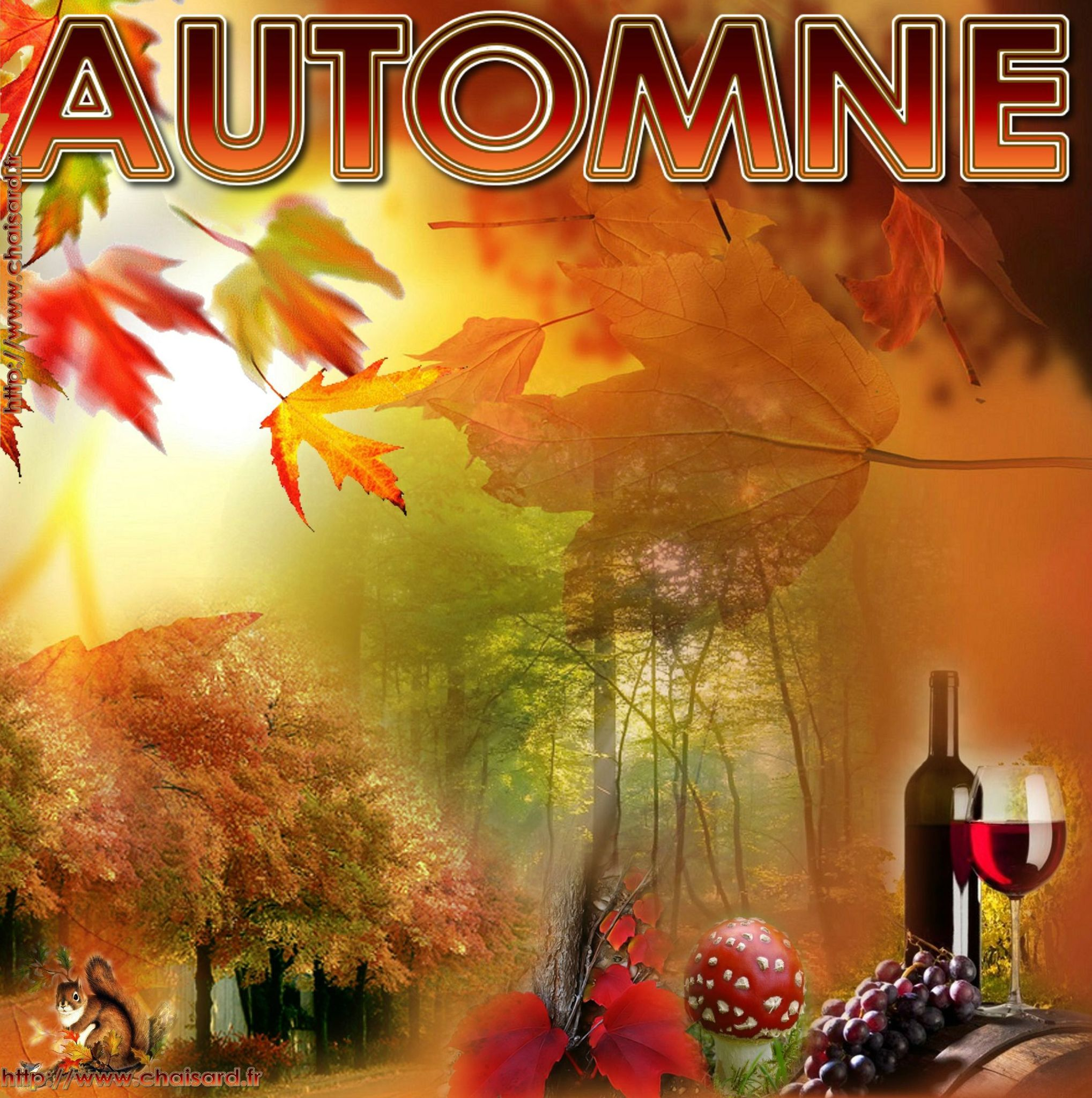 _ 0 CHAISARD AUTOMNE 1 SEPTEMBRE