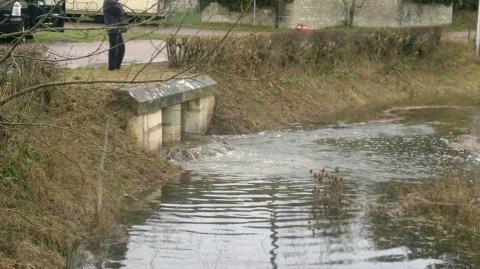 riviere_de Sougères_ par Jycé