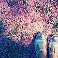 Ptits morceaux de printemps #1rose