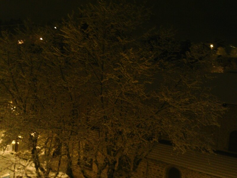 neige 15 janvier 2017 (04)