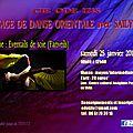 Stage de danse orientale animé par sailyne le 25 janvier 2014 à vaulx-en-velin (69)