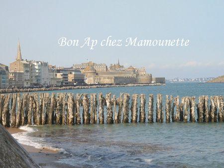 Saint Malo juin 2013 067
