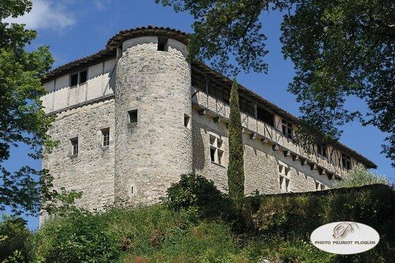 CASTELNAU_DE_MONTMIRAL_Chateau_de_MAYRAGUES_facade_ouest