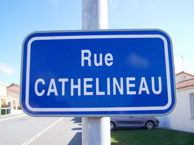 Cathelineau Yzernay