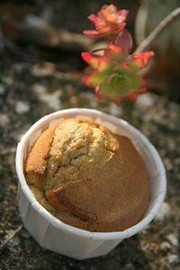 Muffins_dor_s___la_ch_taigne_Nanie
