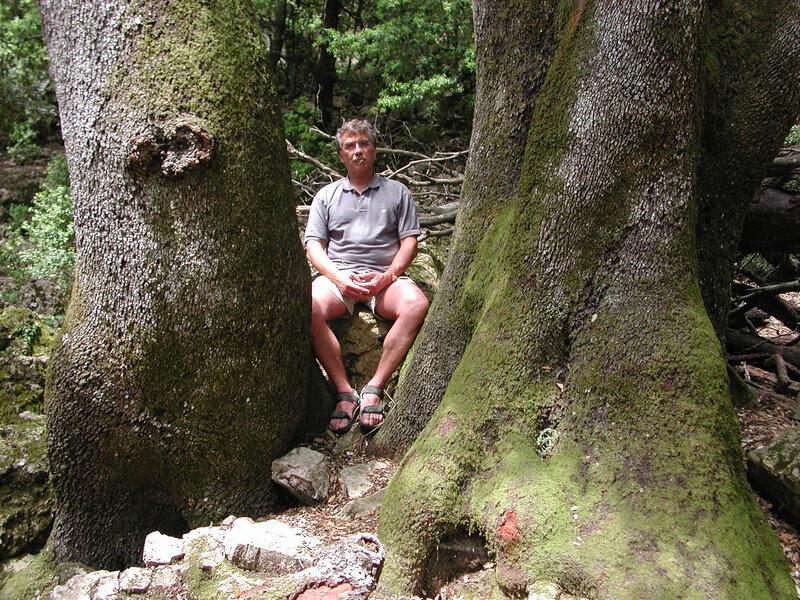 Dscn4033 forêt Jean-Pierre trônant AB