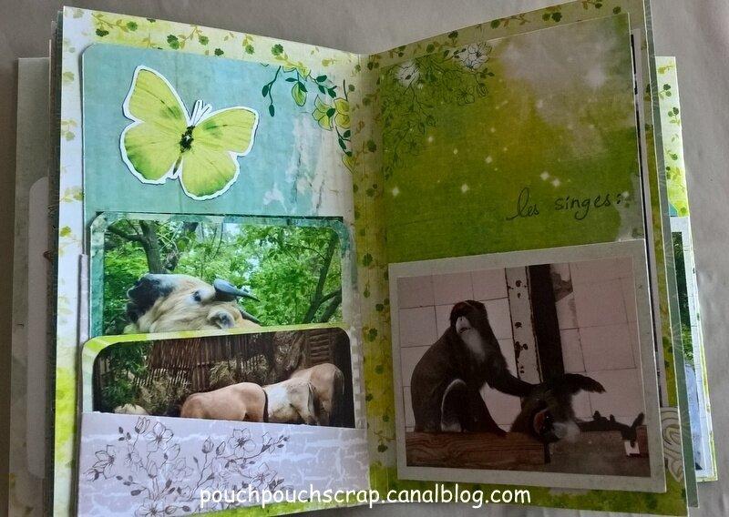 Mini Album Collection Crépuscule (14)