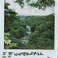 paupau waterfall (Jeju do island)