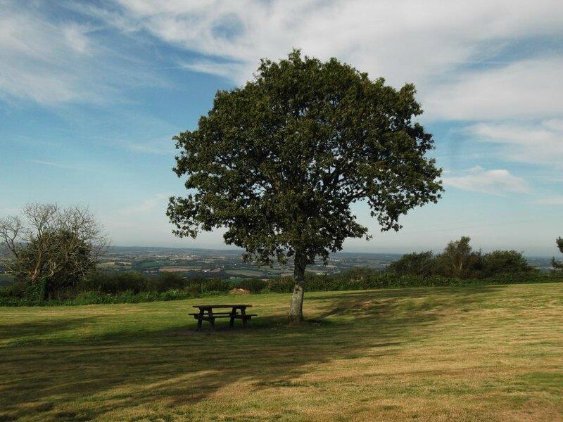 arbre pleyben
