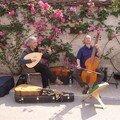 8 Festival des Roses 2007
