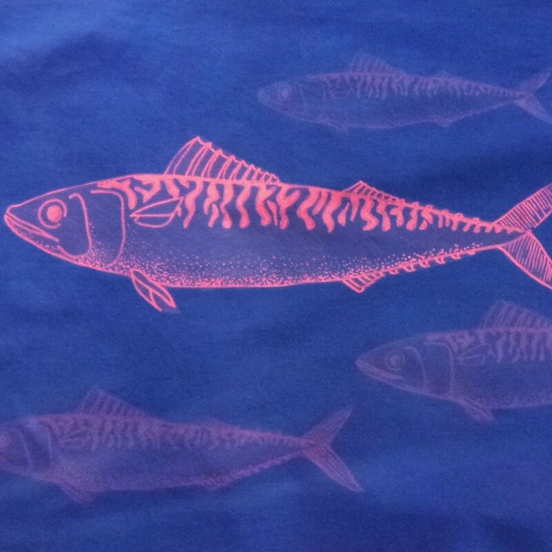 cyanotype poisson 5