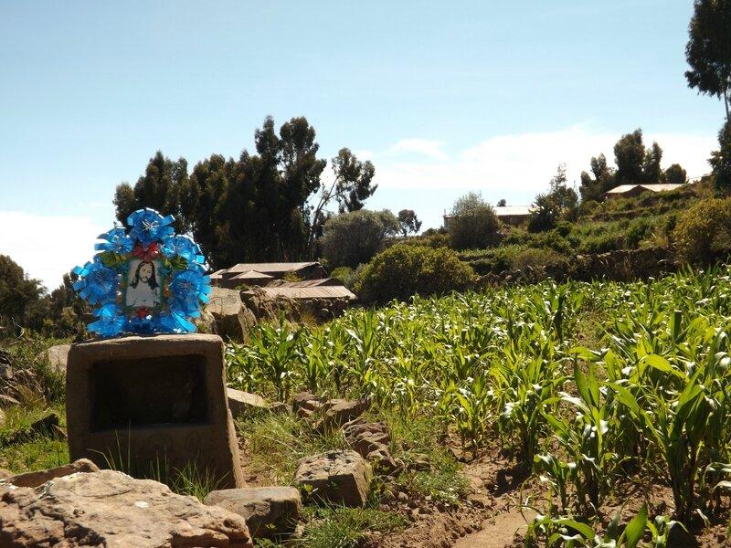 Lac Titicaca, 23 & 24 jan (74)
