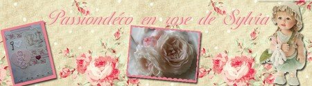 Passion_D_co_en_rose_de_Sylvia_copie