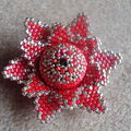 Une edelweiss...