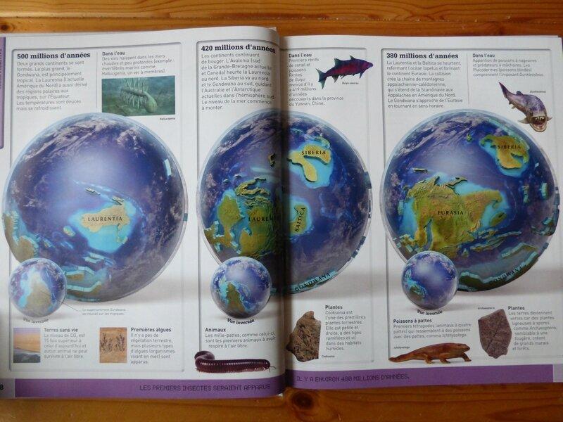 Le monde en cartes 3D (1)