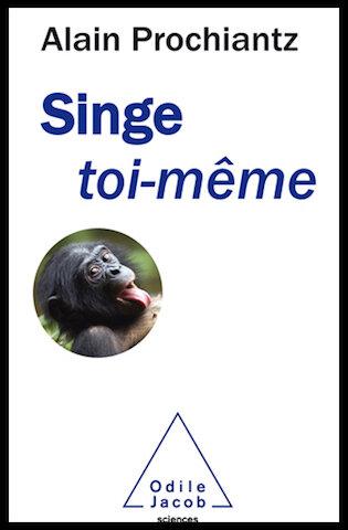 singe toi meme