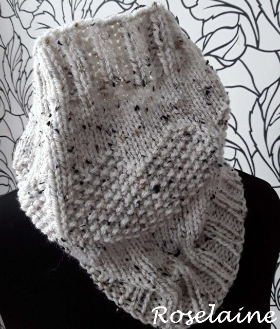 Roselaine Snood Audrey Tricot 1