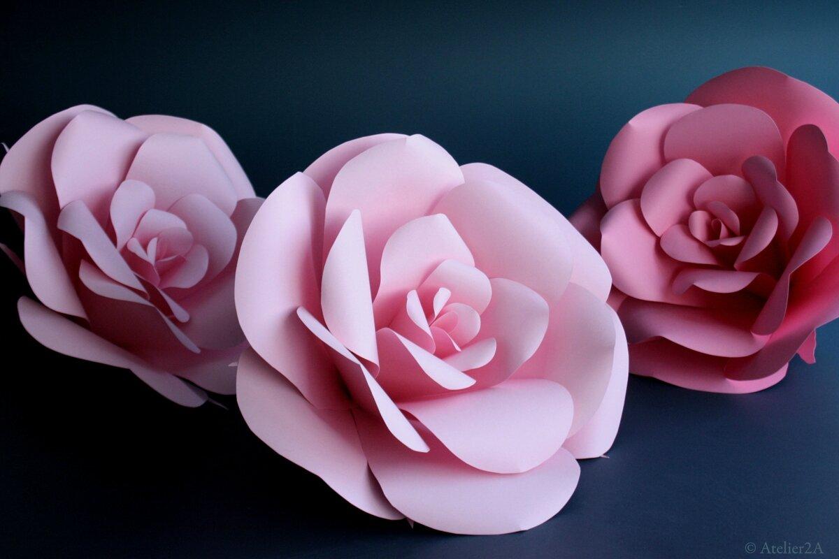 Realisation Creation De Fleurs Geantes En Papier Pour La