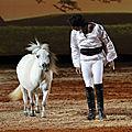 equestria012