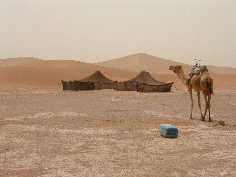 Desert Saharien