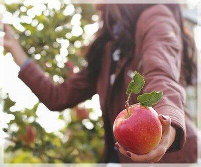 naturo pomme donne