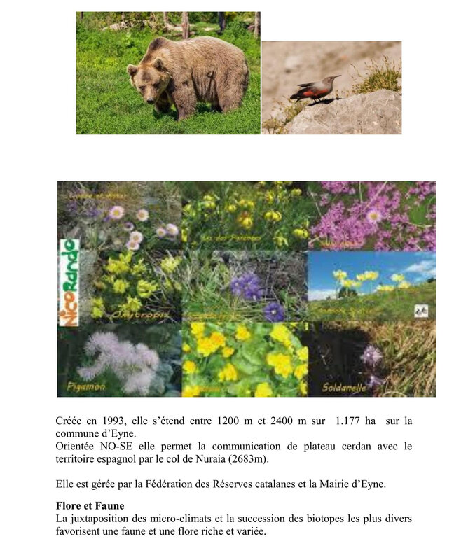 SORTIE RESERVE DE LA VALLEE D¹EYNE - copie 2-3