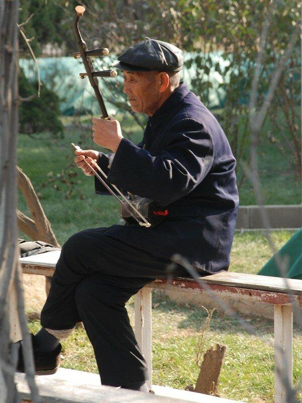 Musicien dans un parc