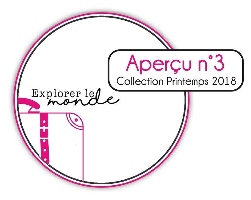 AperçuP18_3