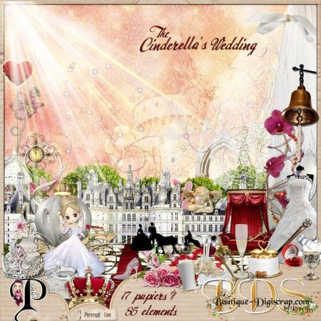 Pepete13_Cinderellas_Wedding_pv_big