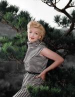1954-PalmSprings-HarryCrocker_home-by_ted_baron-striped-010-1