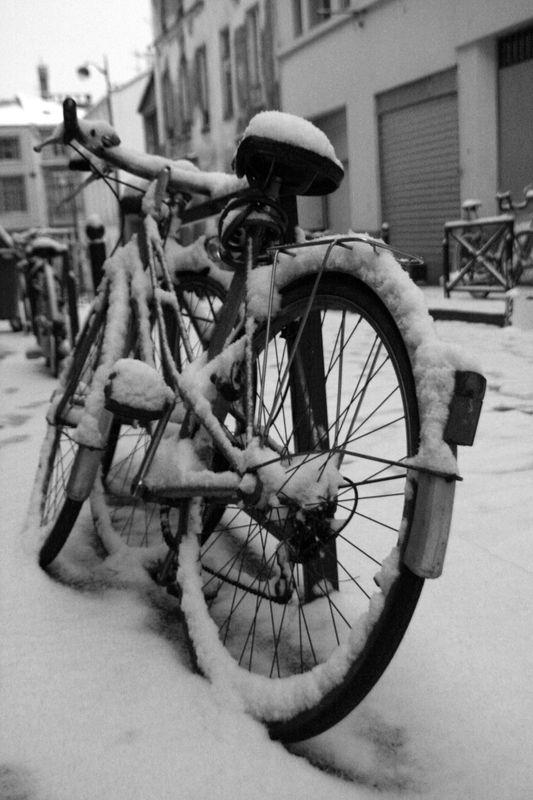 Vélo sous la neige_5067a