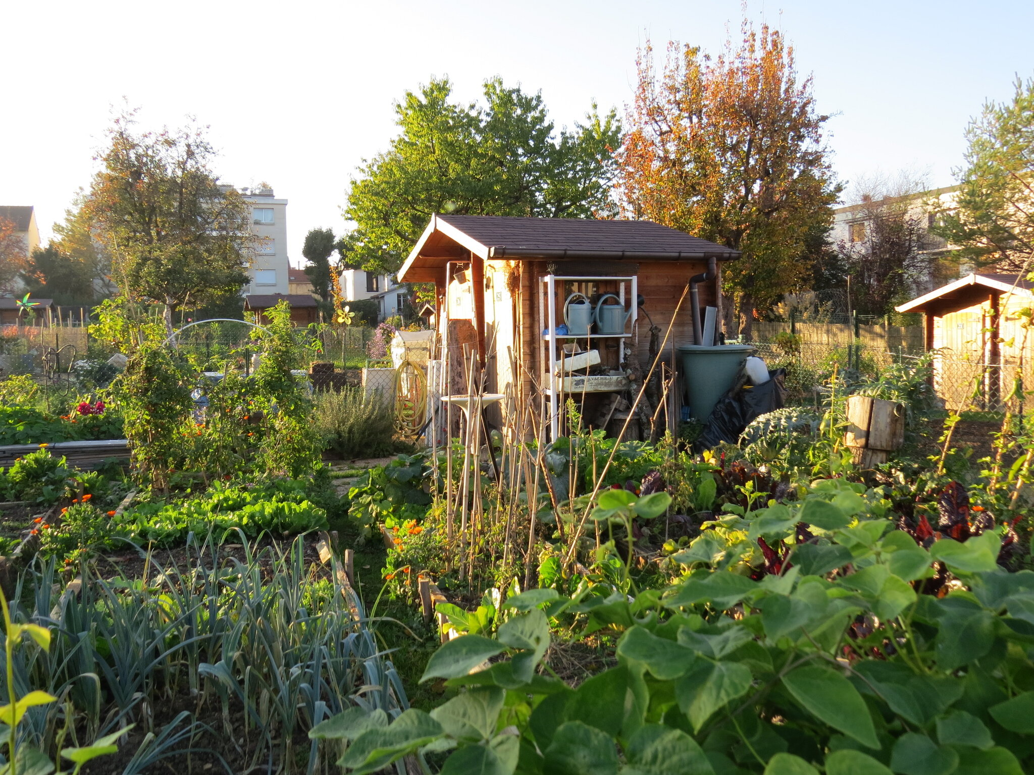 Jardins Rue de la Roue