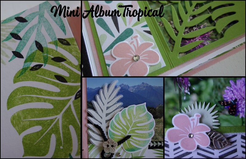 Mini album tropical (2)