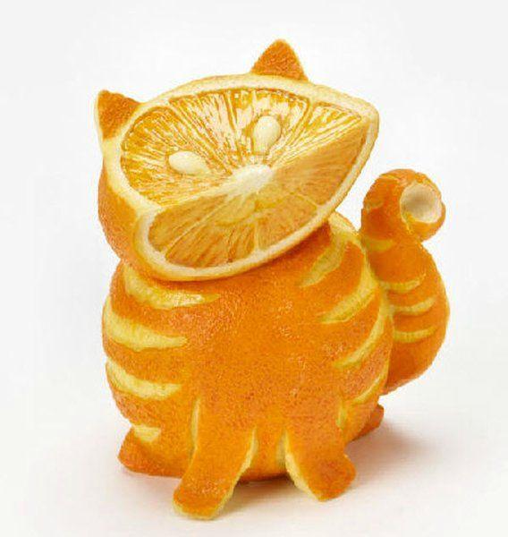 orange-tabby-cat[1]